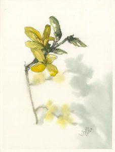 Aquarell Blüte2